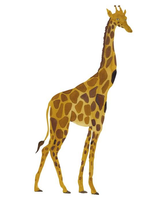 That's Mine - Wall Sticker Giraffe - Yellow (O8070)