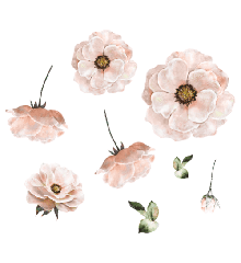 That's Mine - Wall Sticker Poppy - Rose (O8047R)