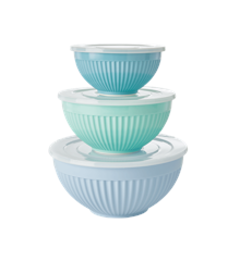 Rice - Melamine Bowls with Lid 3 pcs - Green Blue