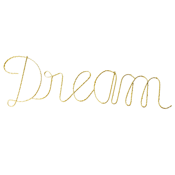 Rice - LED Sign in Dream