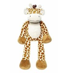 Diinglisar Wild - Giraf