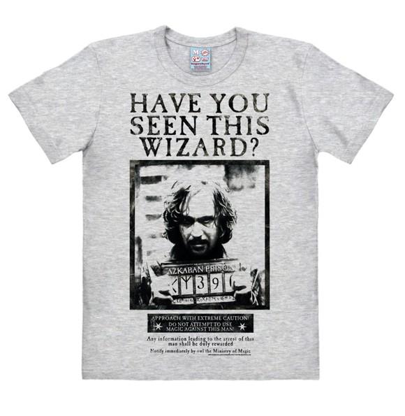 Harry Potter - Have You Seen This Wizard - Easyfit - grey melange - Original licensed product