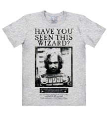 Harry Potter - Have You Seen This Wizard - Easyfit - grey melange - Original licensed product