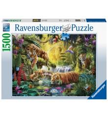 Ravensburger - Puslespil 1500 brikker- Tigre (10216005)