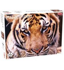 Tactic - Puzzle 1000 pc - Tiger Portrait