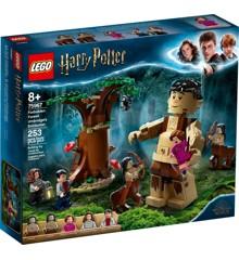 LEGO Harry Potter - Den Forbudte Skov: Nidkjærs møde (75967)