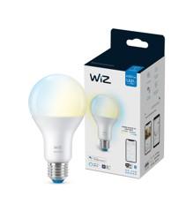 WiZ -  A67 bulb E27 Tunable white - Smart Home