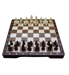 Chess Set - Medium (TWE197911)