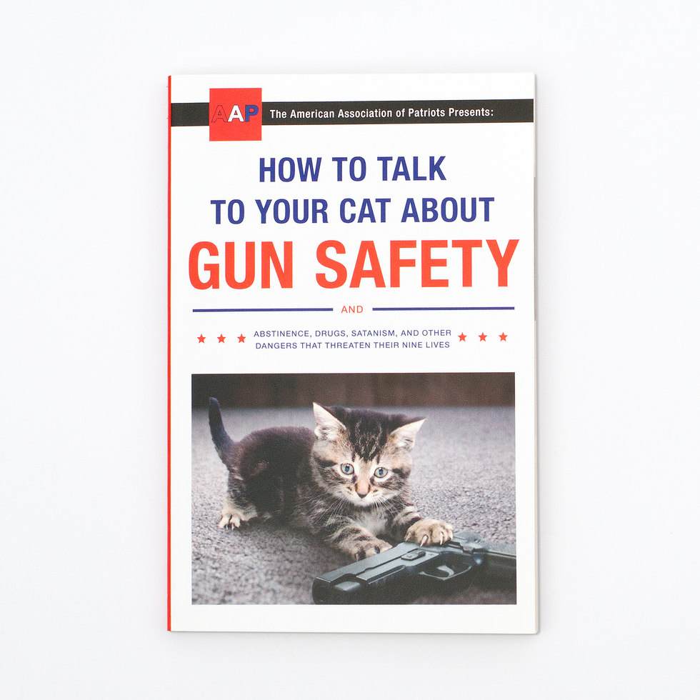 How to Talk to Your Cat About Gun Safety (20976)