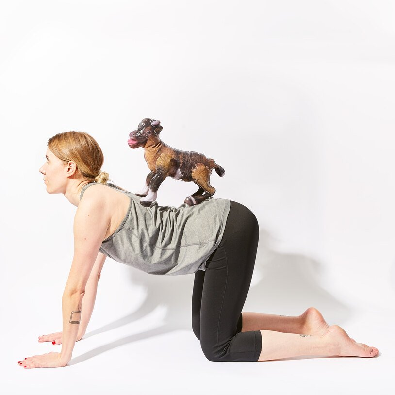 Goat Yoga Party Game (22478)