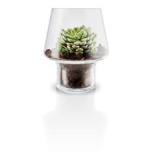 Eva Solo - Sukkulent Glass Vase Ø 15 cm - Transperant (568187)