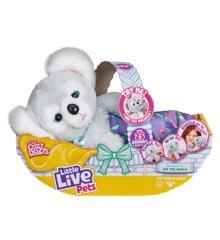 Little Live Pets - Koala Bear (40-00776)
