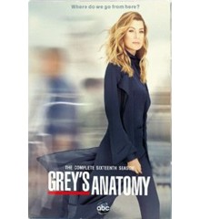 Greys Anatomy Season 16