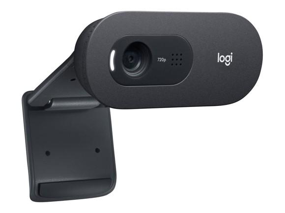 Logitech - C505e HD Webcam, brownbox