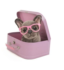Studio Pets Plush, 23 cm - Shady (95-IT-23101)