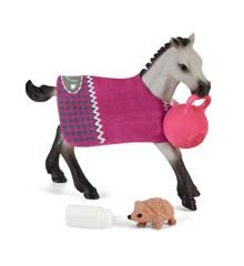 Schleich - Playful Foal (42534)