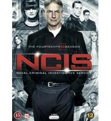 NCIS: Season 14 (6-disc)