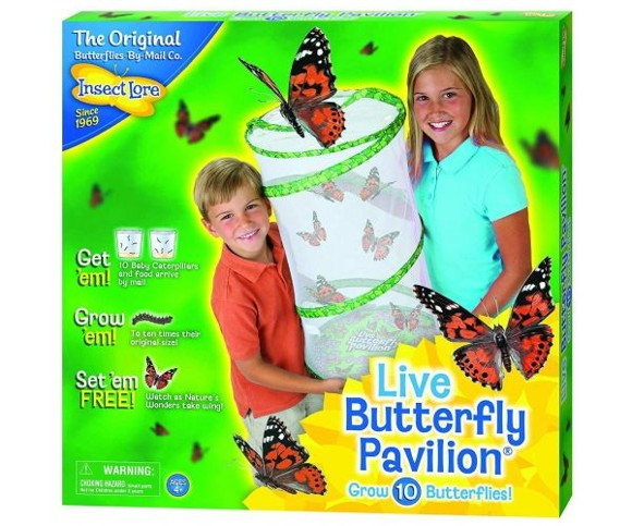 Insect Lore - Butterfly Pavilion