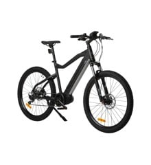 WITT - Ebike E-Hardtail Mountainbike