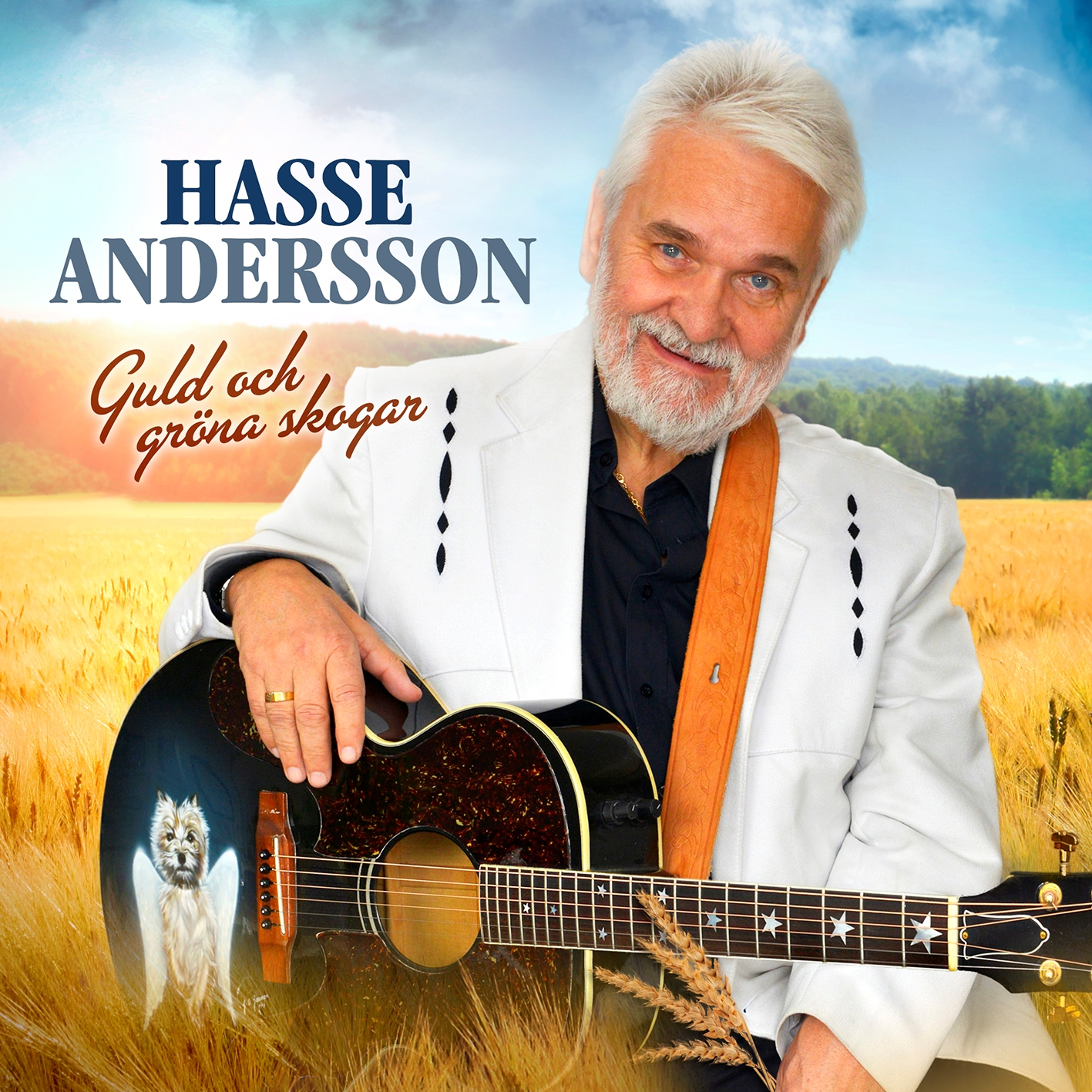 Andersson Hasse/Guld Och Grona Skogar - CD