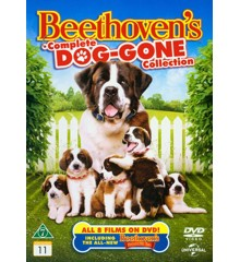 Beethoven's Complete Dog-Gone Collection (8 film) - DVD
