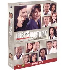 Greys Anatomy/Greys Hvide Verden - saeson 10 - DVD
