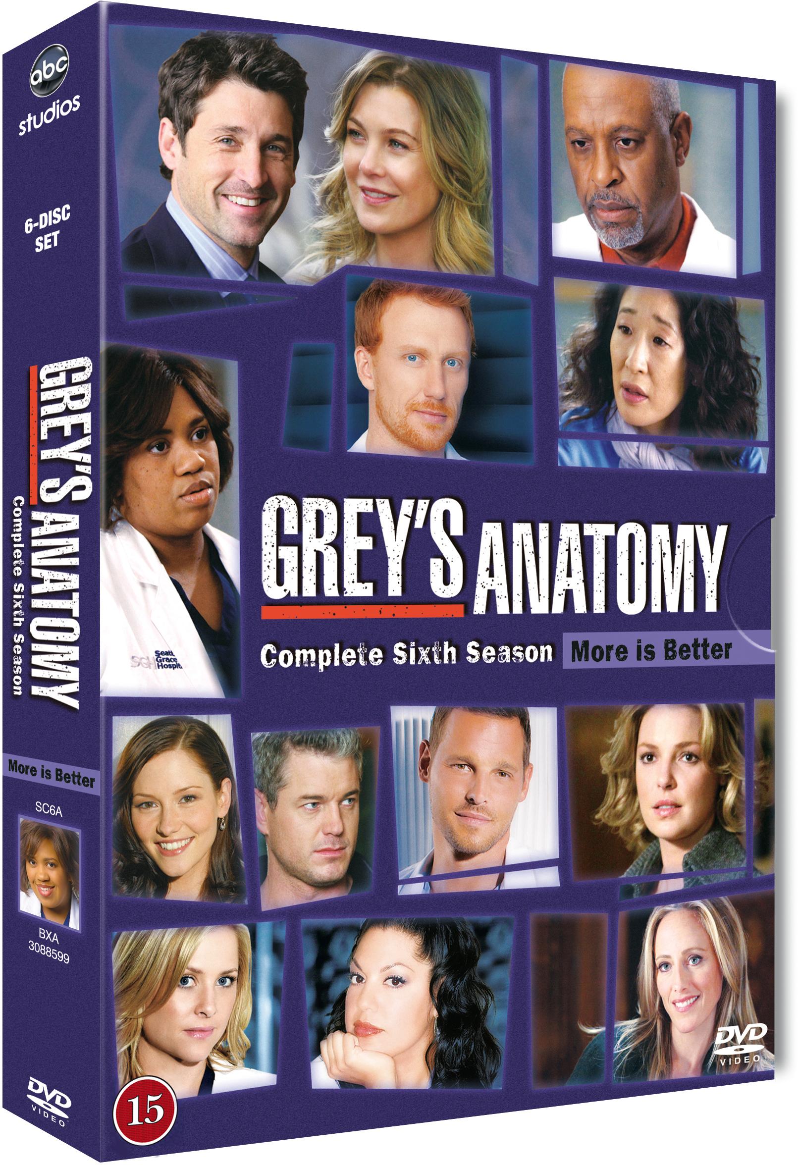 Greys Anatomy 6