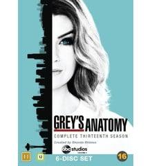 Grey's hvide verden - Sæson 13 - DVD