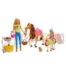 Barbie - Dolls, Horses & Accessories (FXH15)