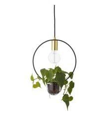 Bloomingville - Pendant Lamp - Gold (68801023)