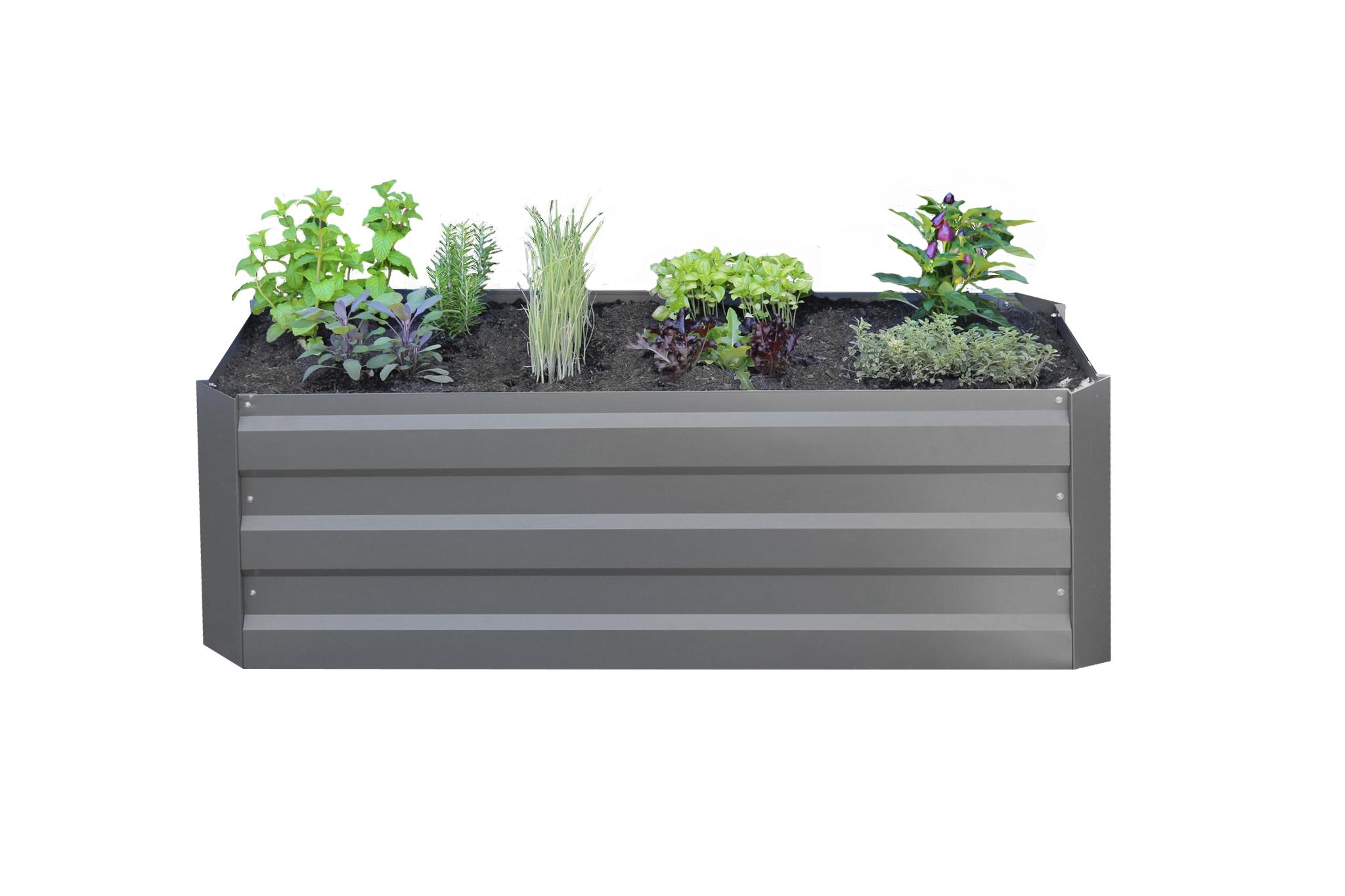 Gardenlife - Easy Raised Bed 52 x 95 cm - Small (131664)