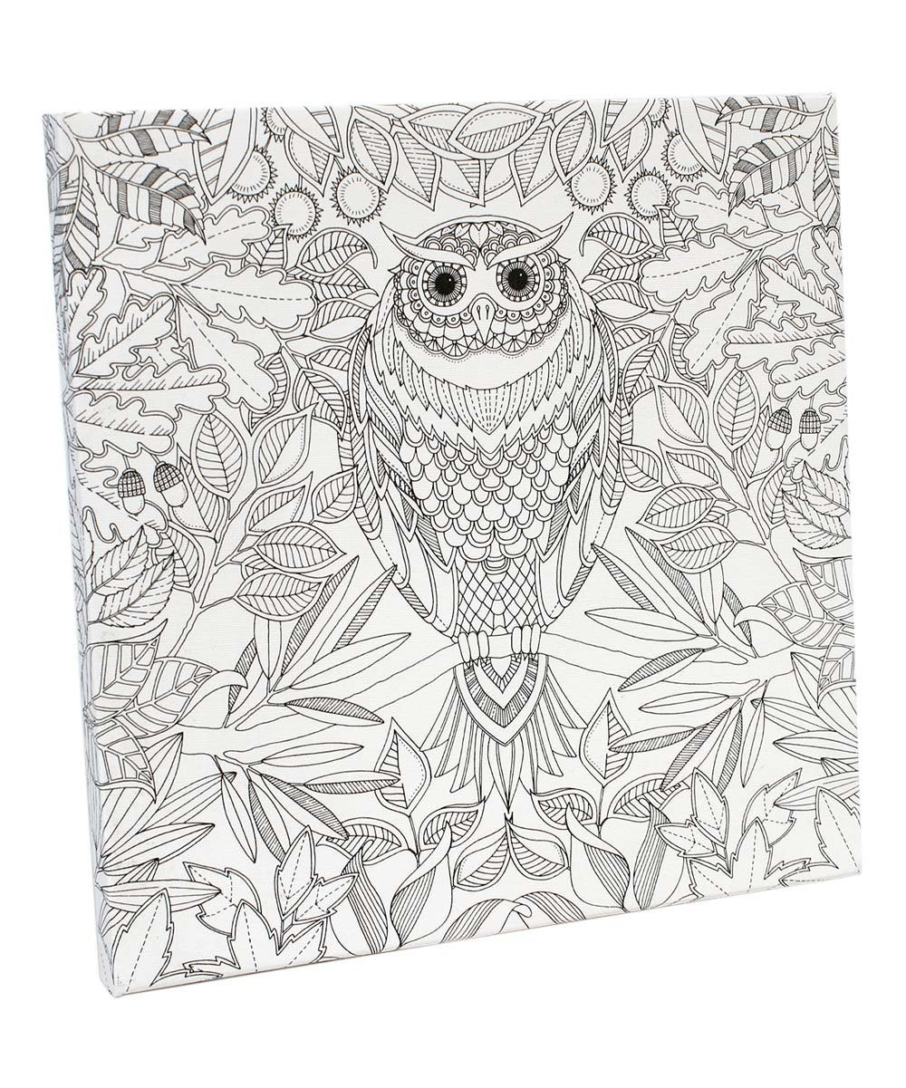 Kaufe Johanna Basford - Coloring Canvas - Owl