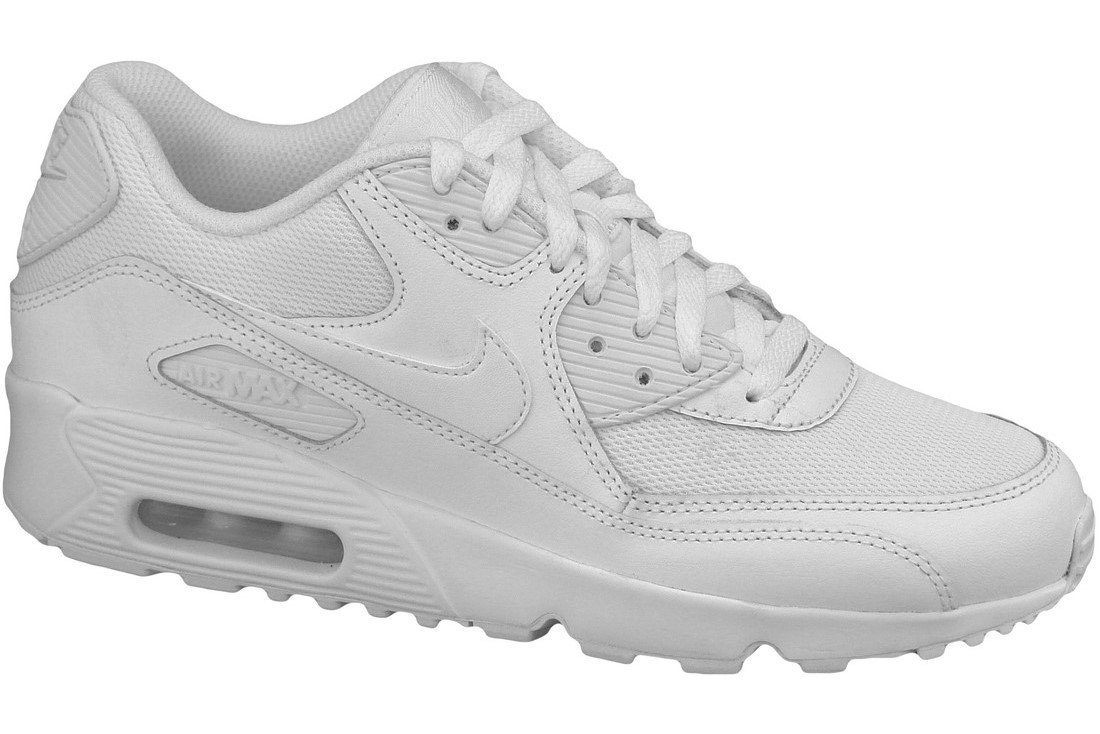 Shop White Nike Air Max 90 Mesh for Kids | NISNASS