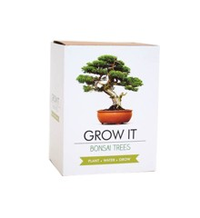 Grow it - Bonsai Boompje