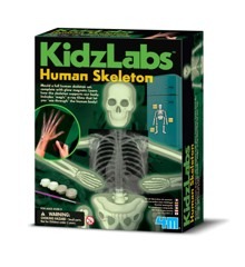 KidzLabs - Glow in the Dark Skeleton (3375)
