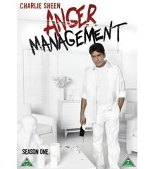 Anger Management: Sæson 1 (2-disc) - DVD