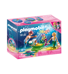 Playmobil - Magic - Family Outing (70100)
