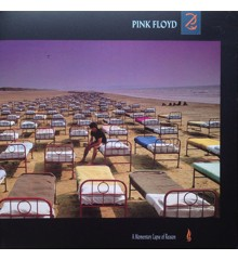 Pink Floyd ‎– A Momentary Lapse Of Reason - Vinyl
