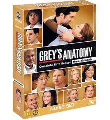 Greys Anatomy/Greys Hvide Verden - saeson 5 - DVD
