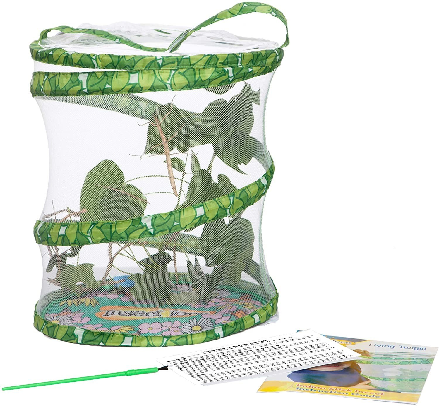 Insect Lore - Living Twig Kit