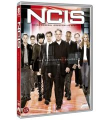 NCIS - Season 11 - DVD