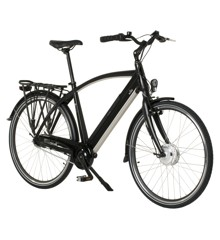 zz Witt - E-bike E650 Male