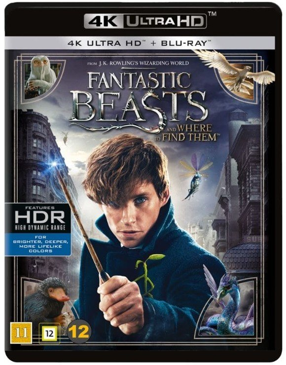 Fantastic Beasts and Where to Find Them (4K Blu-Ray)