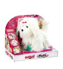 Animagic - Fluffy goes Walkies