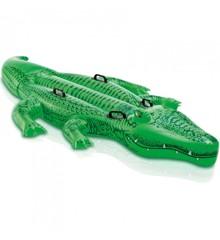 INTEX - Krokodille Badedyr