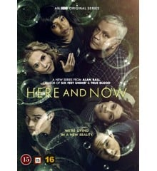 Here and Now: Sæson 1 (4-disc) - DVD