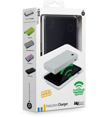 Induction Charger + Battery for DSi (Bigben)