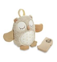 Cloud B - Nighty Night Owl - Uglebamse med sensor og sovelyde