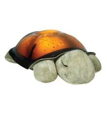 Cloud B - Original Skildpadde Natlampe - Twilight Turtle - Classic Mocha
