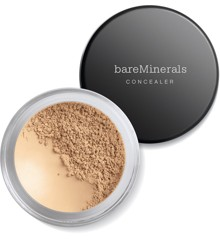 bareMinerals - Powder Concealer SPF 20 - Well Rested